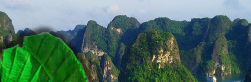 Halong Bay hotels, Halong Bay resorts